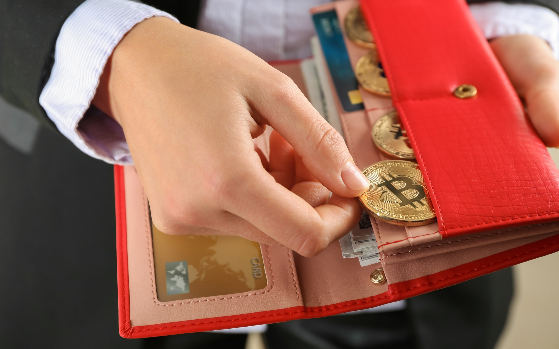 жилья картинки красного кошелька с деньгами тех